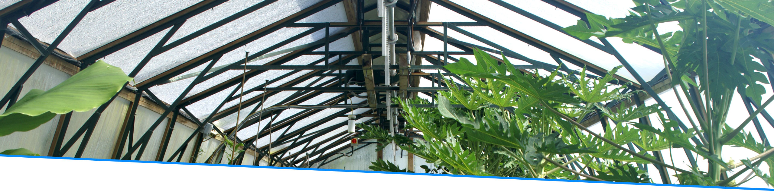 ETFE-panels-for-horticulture1