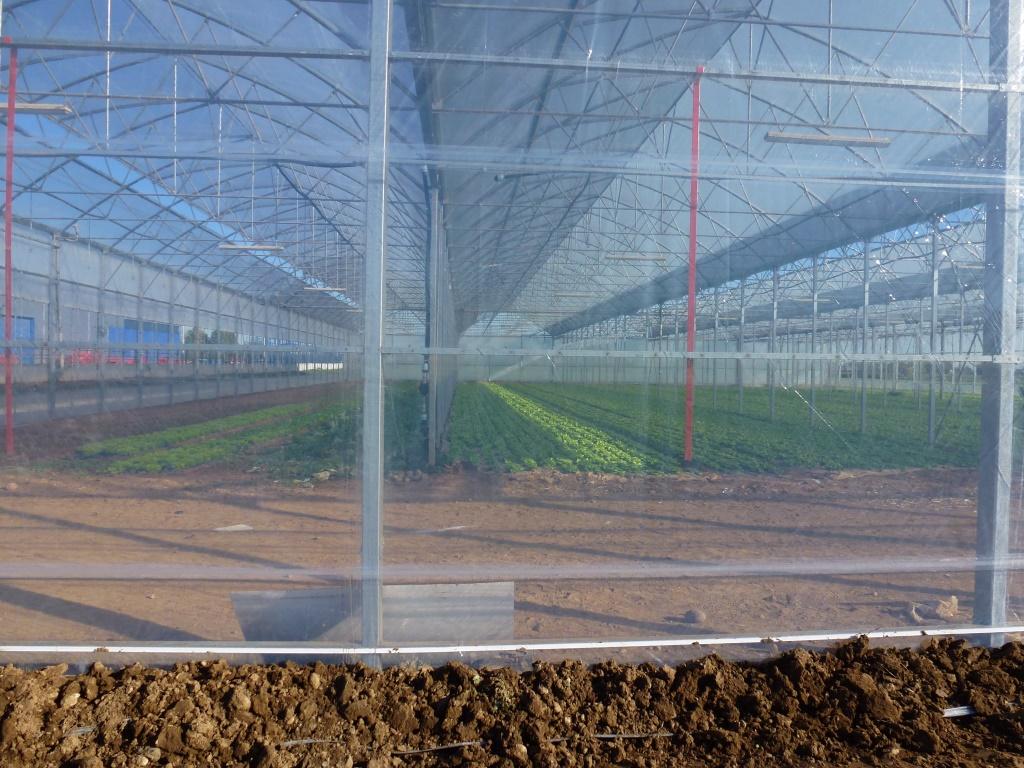 ETFE Sheet | ETFE Welding : Holscot – ETFE Products